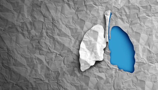 Lungs Health stock photo