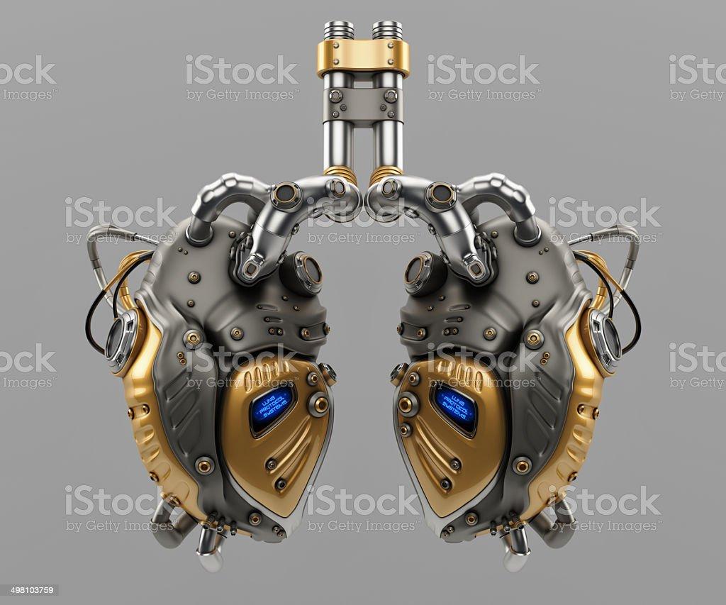 Lungen Protokoll Systems – Foto