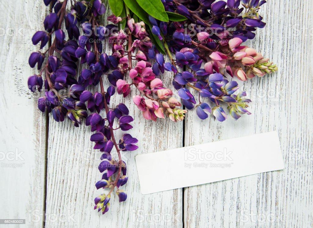 Lupine flowers on a  table foto de stock libre de derechos