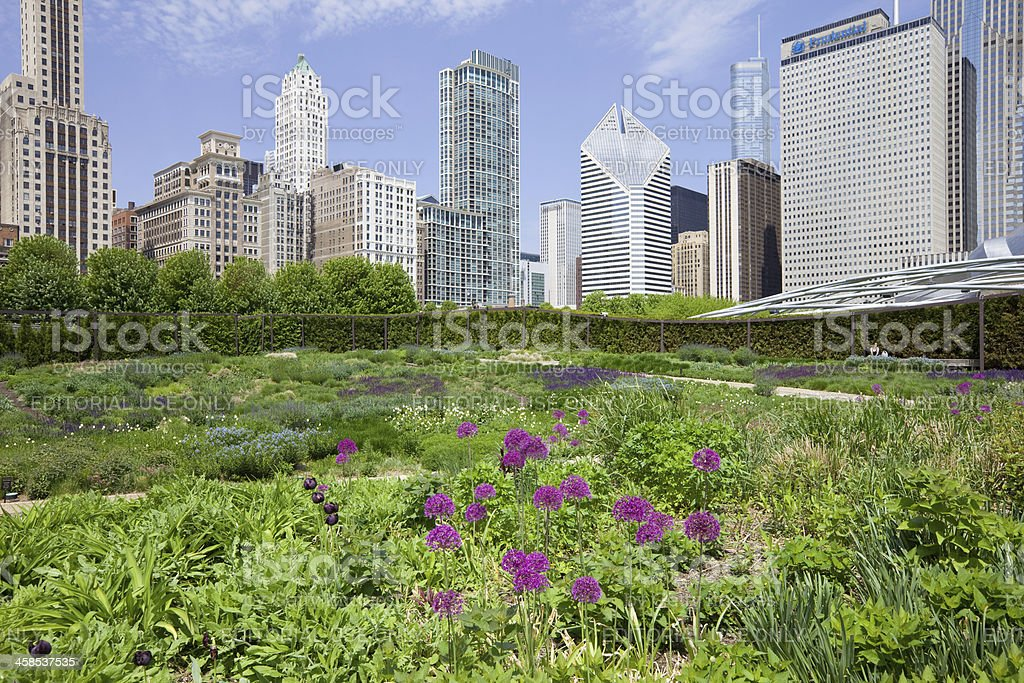 Lurie Garden in Millenium Park Chicago USA royalty-free stock photo