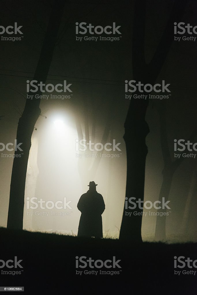 Lurking through the night stock photo