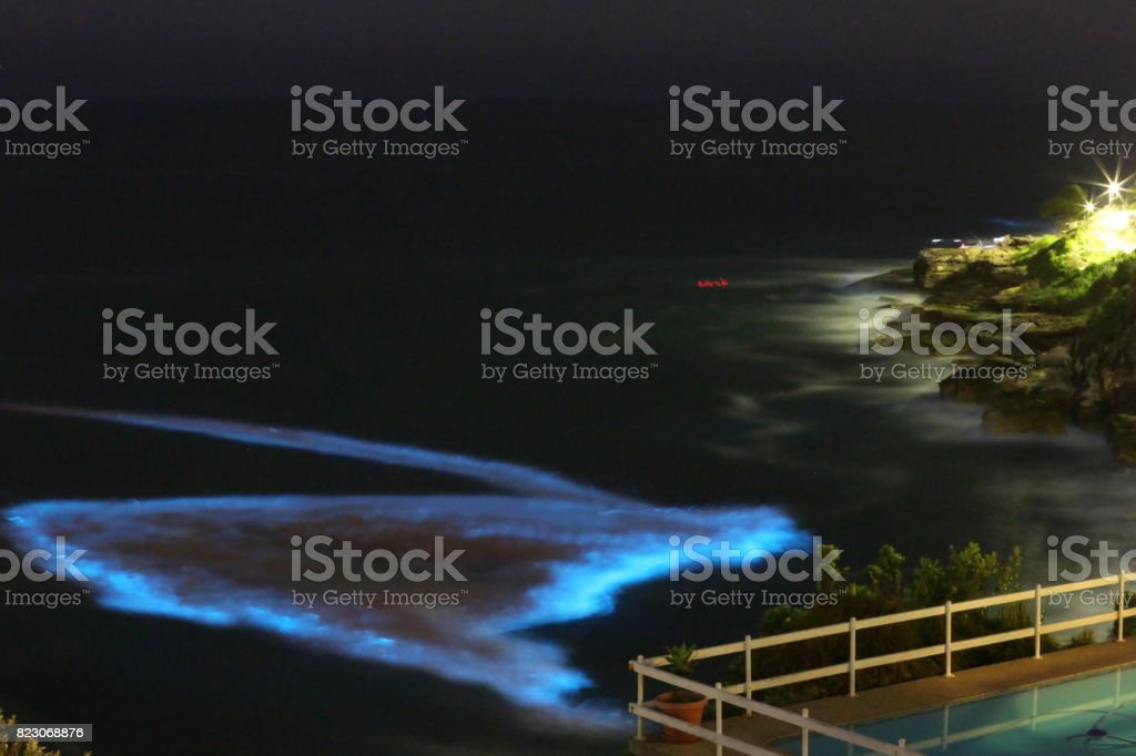Lurline Bay at night, Sydney Australia. stock photo