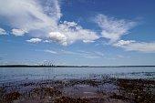 istock Lusatian Lakelands in summer 1139285377