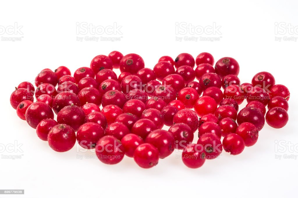 luscious frozen red currant/cranberries isolated on white background, delicious first class organic fruit as a concept of summer vitamins stock photo