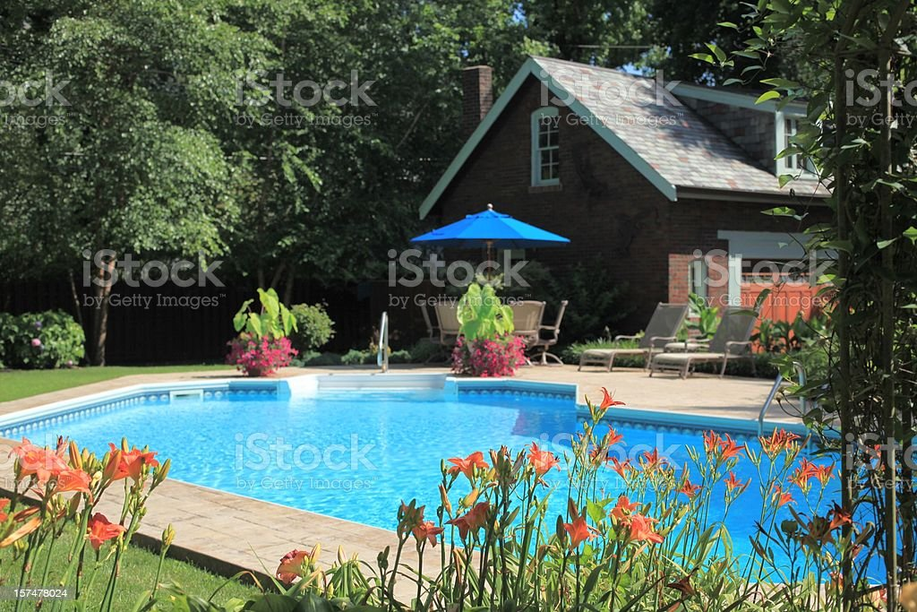 XXXL photo of a lush backyard pool with lots of landscaping, lounge...