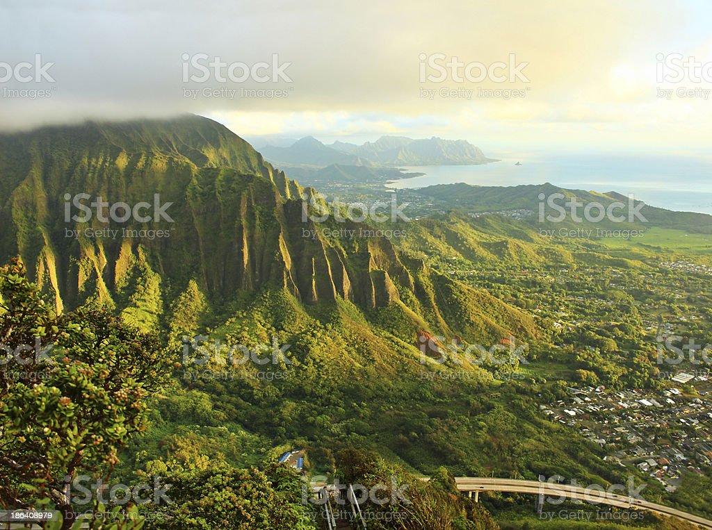Lush coastal landscape stock photo