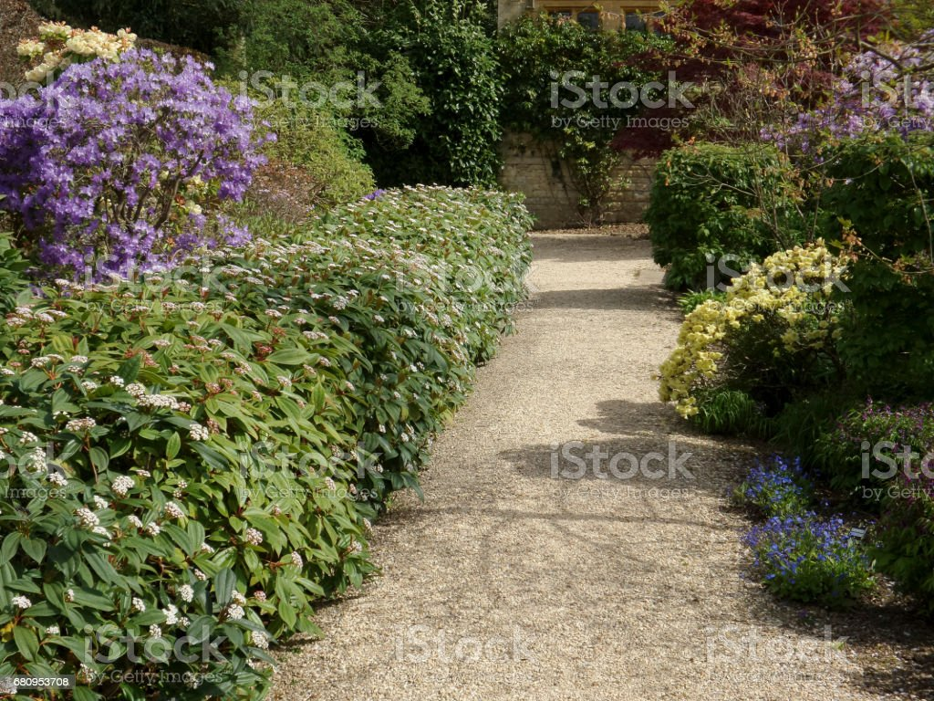 lush english cottage garden royalty-free stock photo