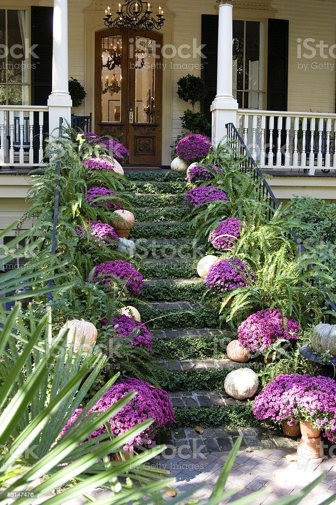 Lush Entryway - Angular View royalty-free stock photo