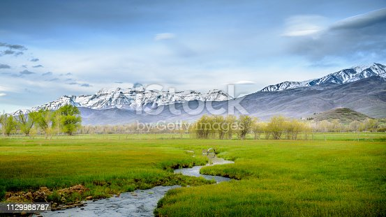 Picture of a lush field and snow covered peaks in Utah, USA