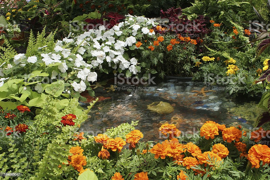 Lush garden royalty-free stock photo