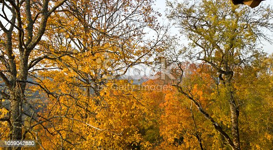 istock Lush Golden foliage of trees in the Park of Latvia near the town of Sigulda. In the distance you can see Turaida castle 1059042880