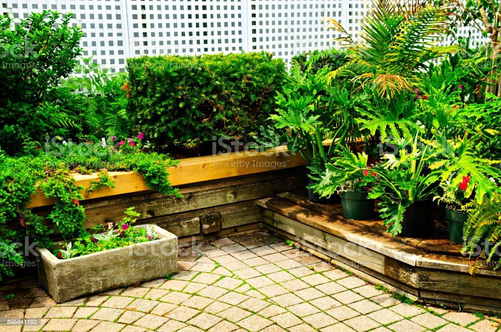 Lush green garden stock photo