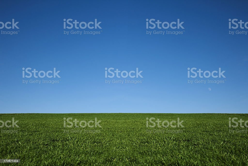 Lush green grass and a cool blue sky stock photo