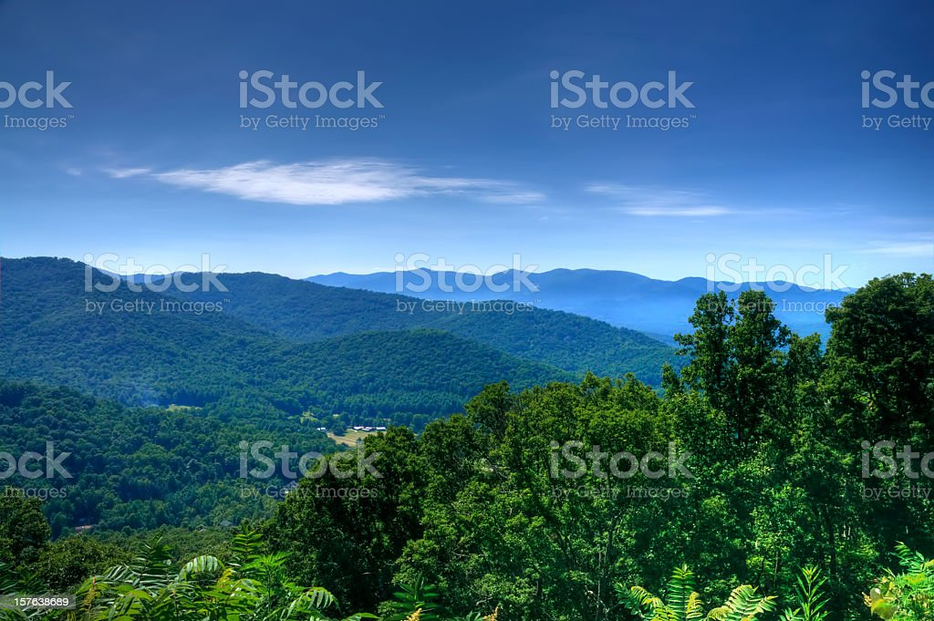 Lush green trees on the Blue Ridge Mountains stock photo