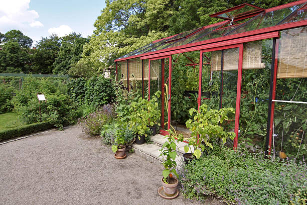 Lush Greenhouse bildbanksfoto