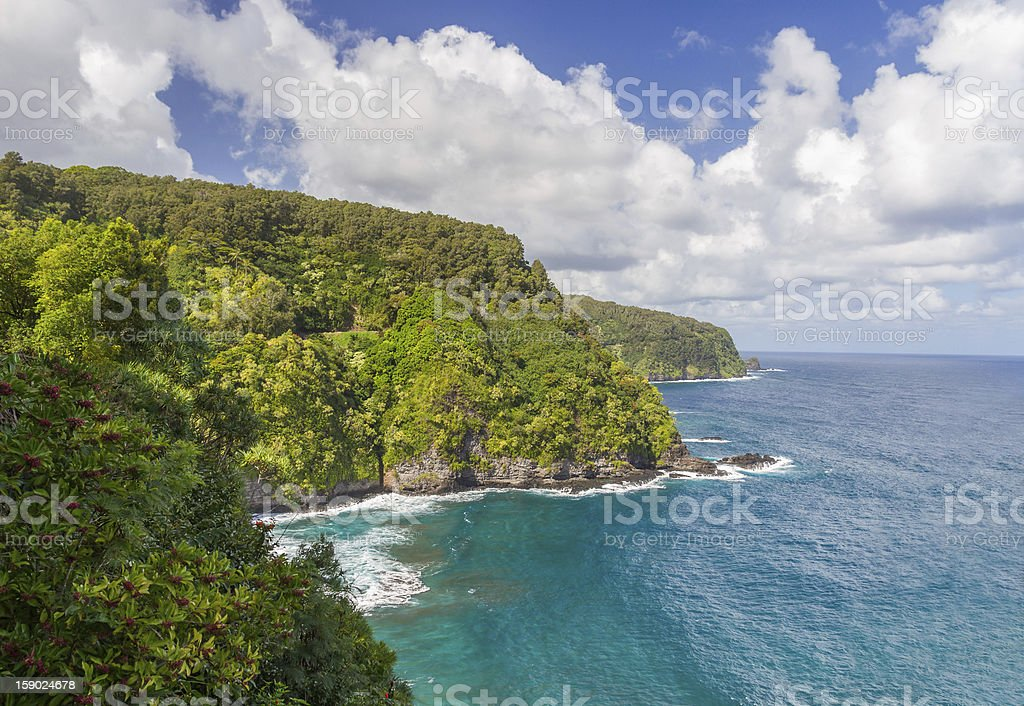 Lush Hana Coastline in Maui stock photo
