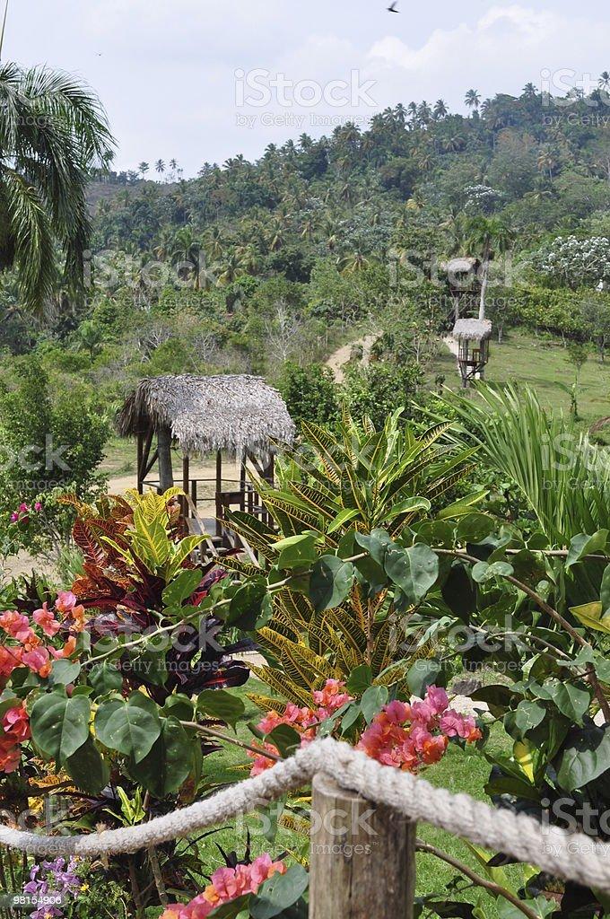 Colline lussureggianti interno della Repubblica Dominicana foto stock royalty-free
