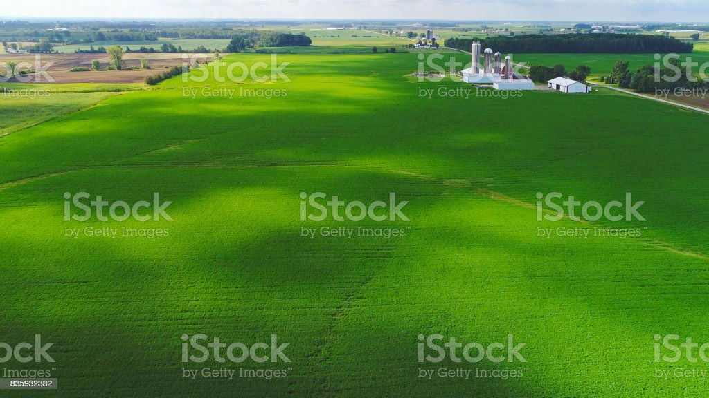 Lush Midwest fields in sunlight and cloud shadows, aerial view stock photo