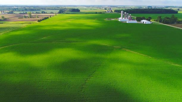 Champs luxuriants de Midwest dans les ombres du soleil et de nuages, vue aérienne - Photo