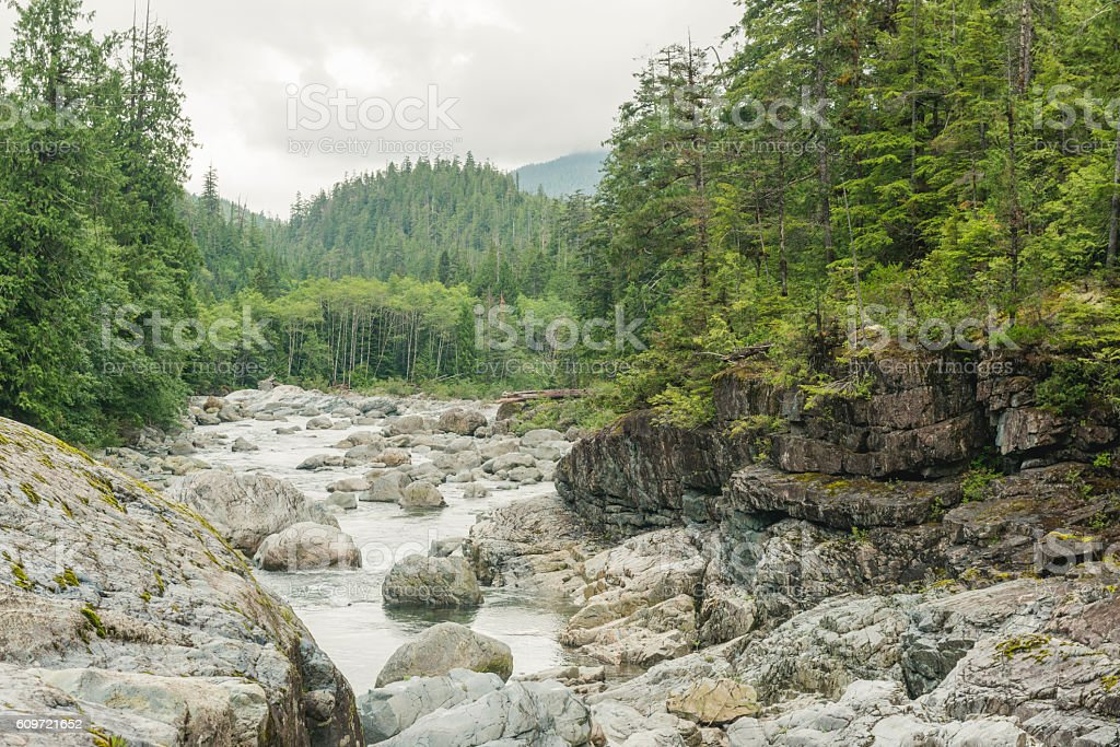 Lush Rugged Scenic Nature Landscape of Vancouver Island BC Canada stock photo