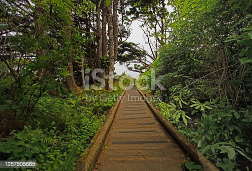 wooden walkway leading to the ocean in central Oregon