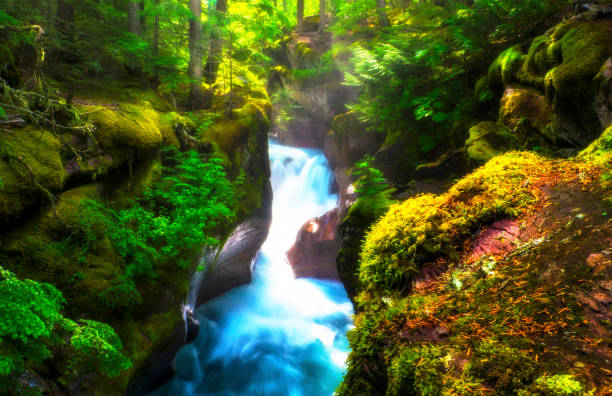 Lush Waterfall In Rain Forest With Slow White And Blue Water Through Green Moss stock photo