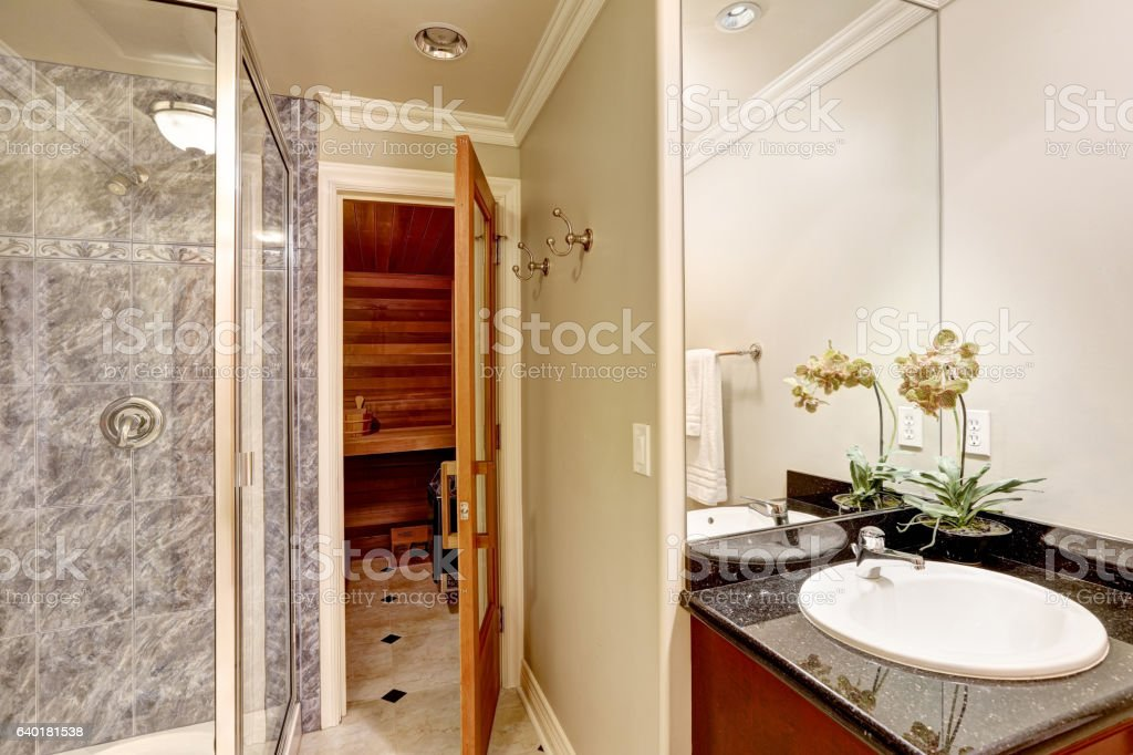Luxurious Bathroom Interior Design With Sauna Stock Photo Download Image Now Istock