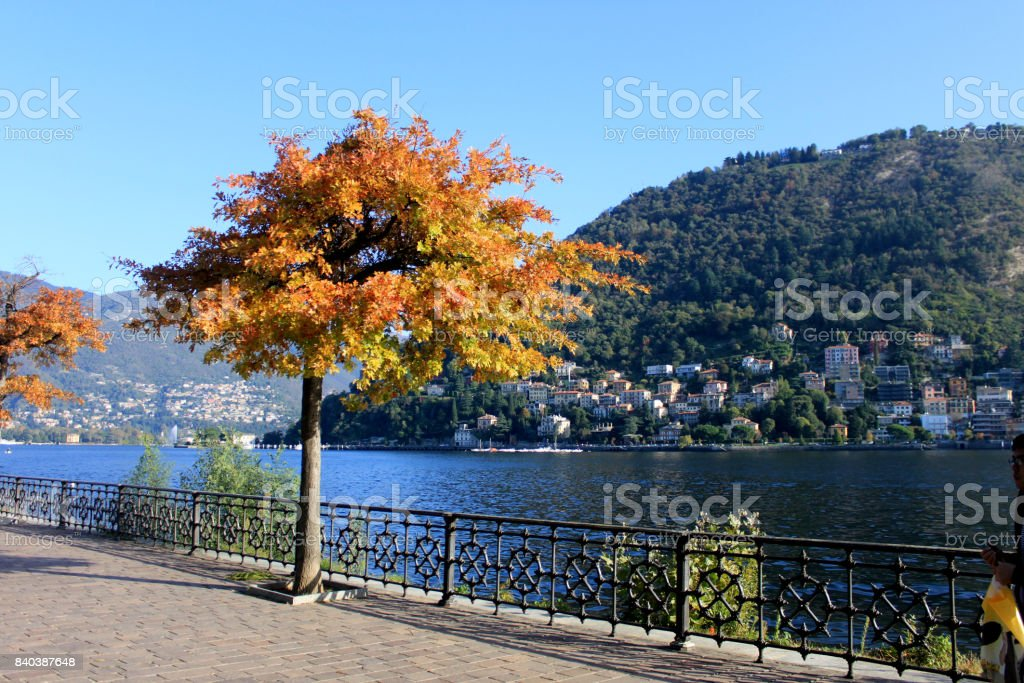 Luxurious historic villa on Lake Como. Cozy alley in the park stock photo