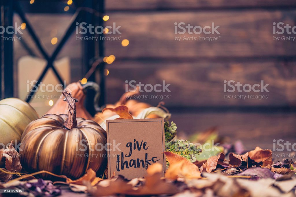 Luxurious still life arrangement for Thanksgiving with message. Give Thanks - foto de acervo