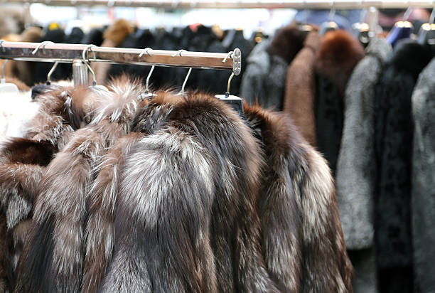 Luxury fur coat in vintage style stock photo
