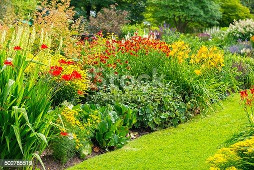 Lush Garden in Swedish summer
