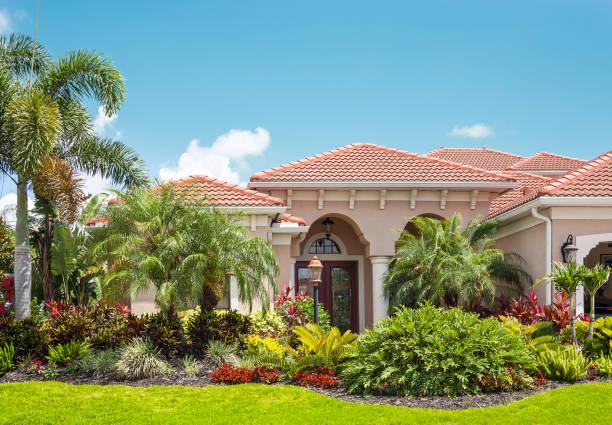 luxuriöses heim mit üppigen tropischen garten - palmengarten stock-fotos und bilder