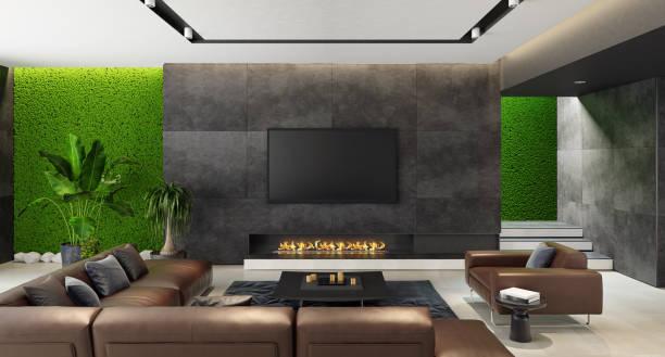 Luxus Wohnzimmer mit innovativen grünes Moos Wände mit Eco Kamin – Foto
