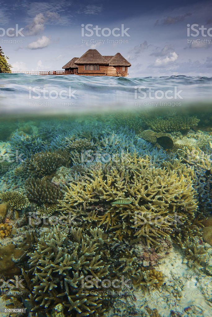 Luxury Maldives accommodation and indian ocean reef stock photo