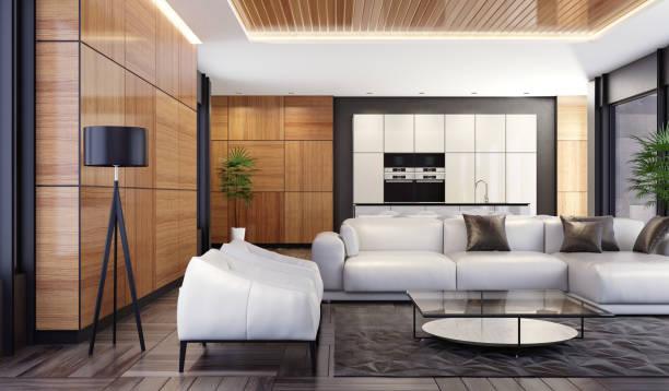 Luxus minimalistisch Freiraum-Wohnzimmer mit Küche und Essbereich – Foto