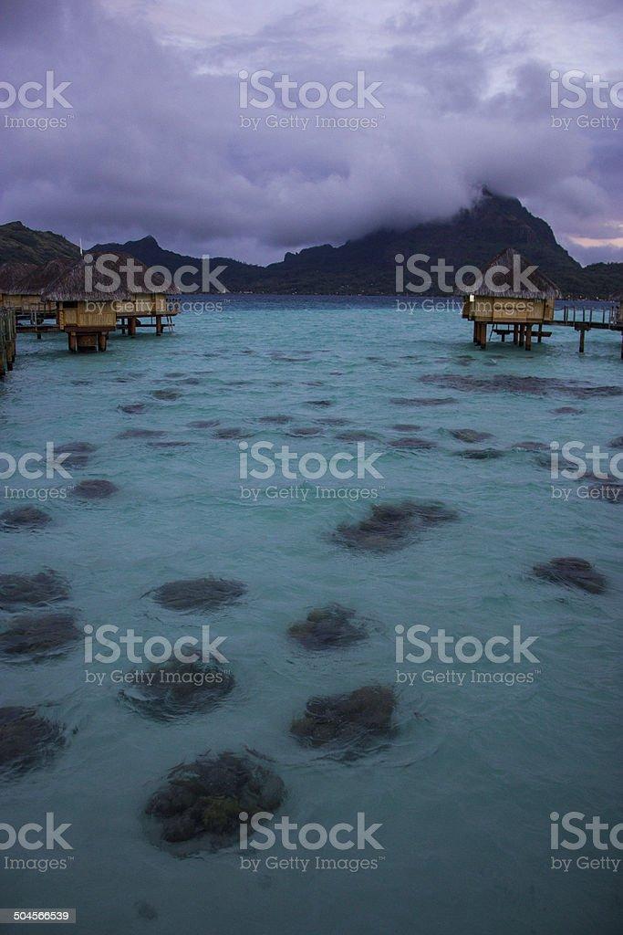 Luxury overwater vacation resort bora bora stock photo