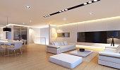 Luxury penthouse interior.
