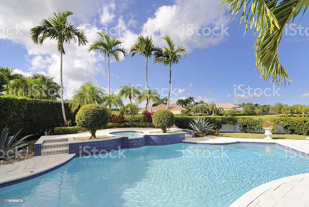 Luxury pool surrounded by palm trees stock photo