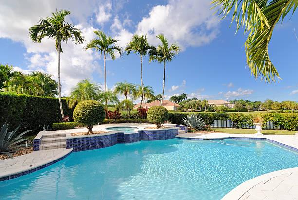 luxury pool umgeben von palmen - palmengarten stock-fotos und bilder