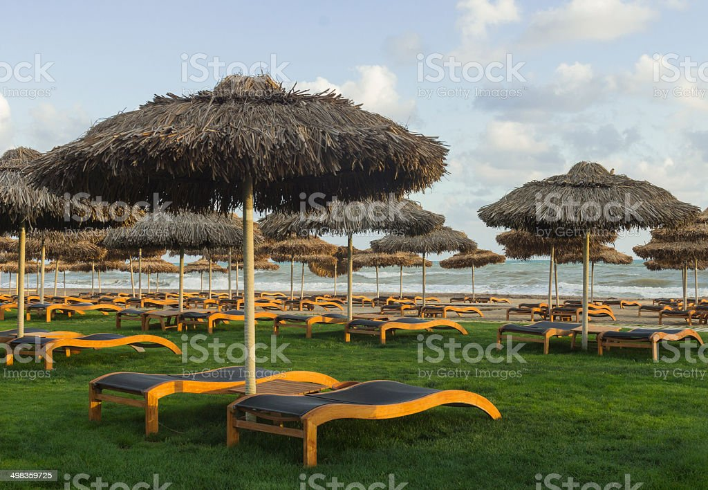 Luxury sunbeds on grass near Mediterranean sea stock photo
