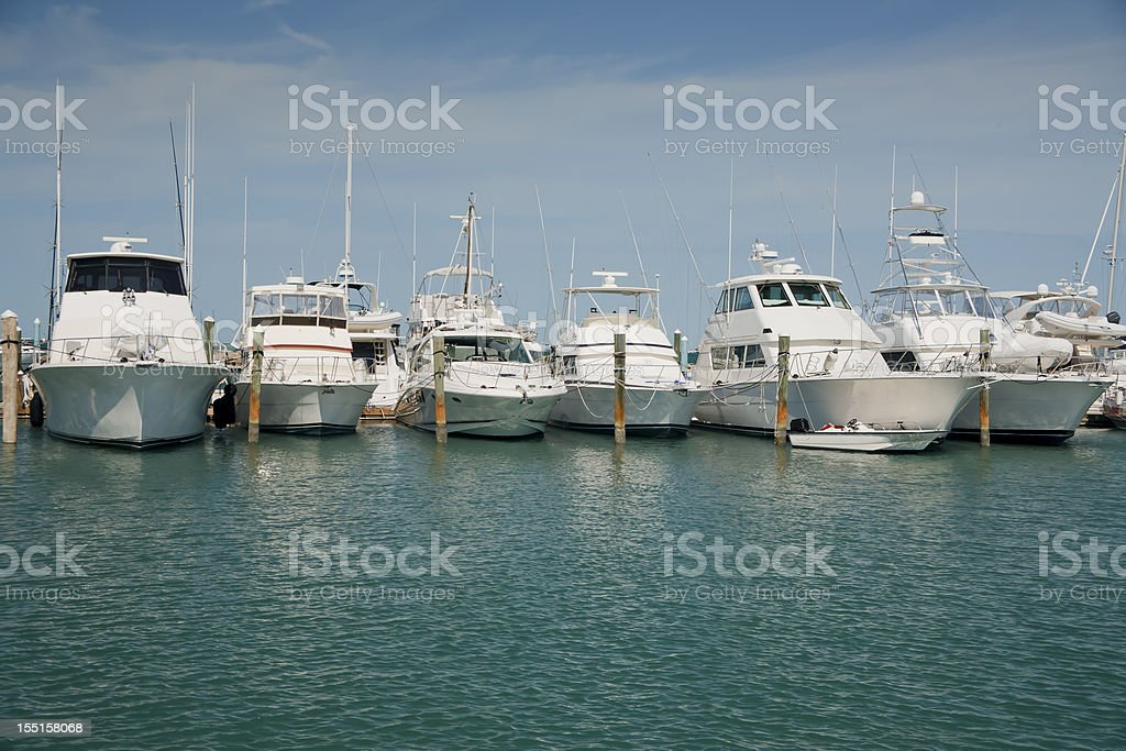 Luxury yachts docked in the water royalty-free stock photo
