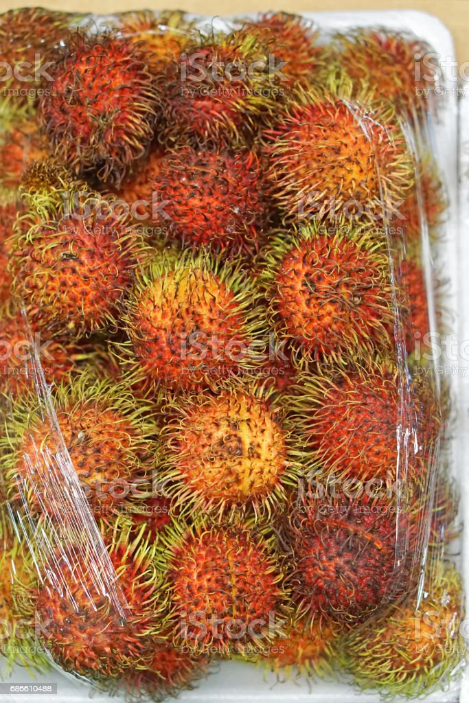 Lychee royalty-free stock photo