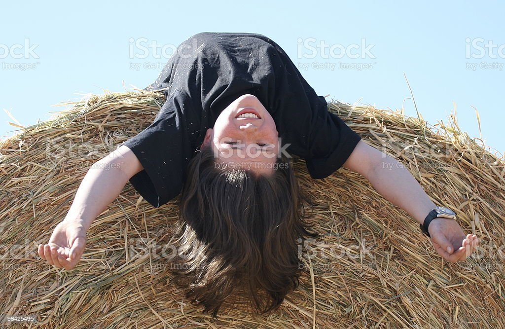 Lying on hay royalty-free stock photo