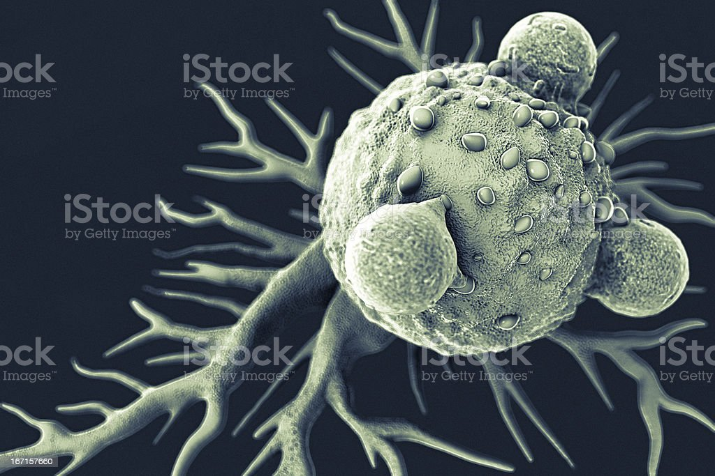 T Lymphocytes and Cancer Cell royalty-free stock photo