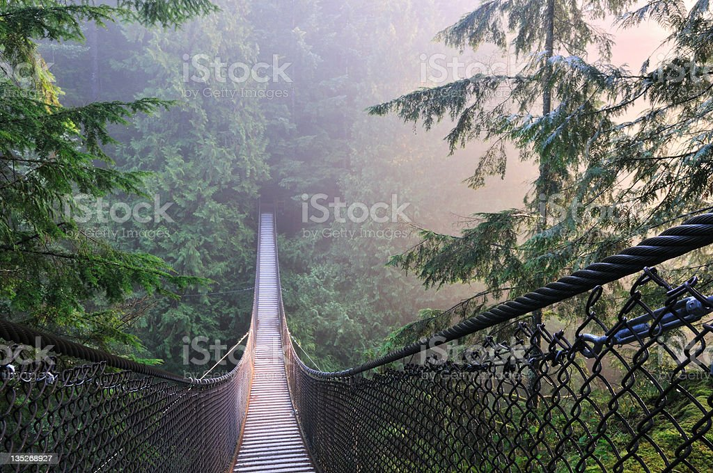 Lynn Canyon Park & Suspension Bridge in a foggy morning stock photo