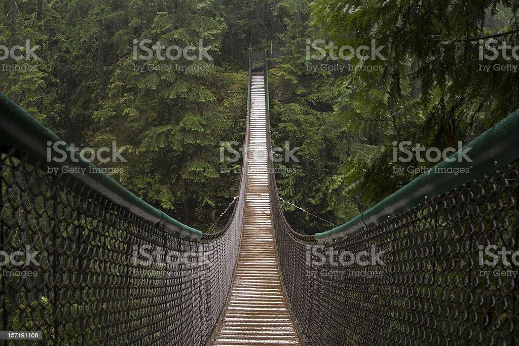 Lynn Canyon Suspension bridge royalty-free stock photo