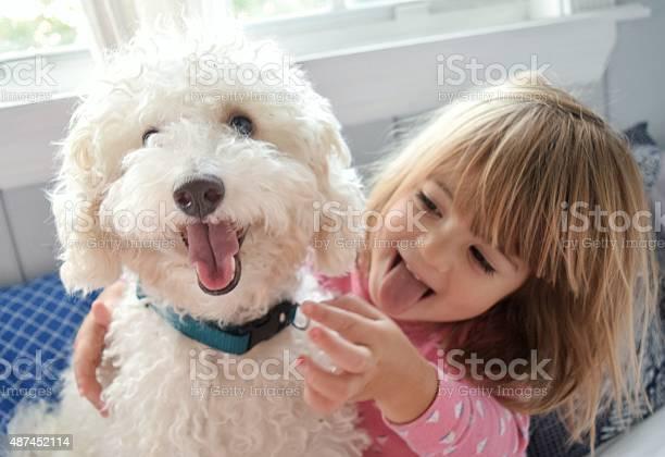 M a dog too picture id487452114?b=1&k=6&m=487452114&s=612x612&h=gd1fxcttkb9qrox1dlc cncxxxc ayrzxrzeizfc5bc=