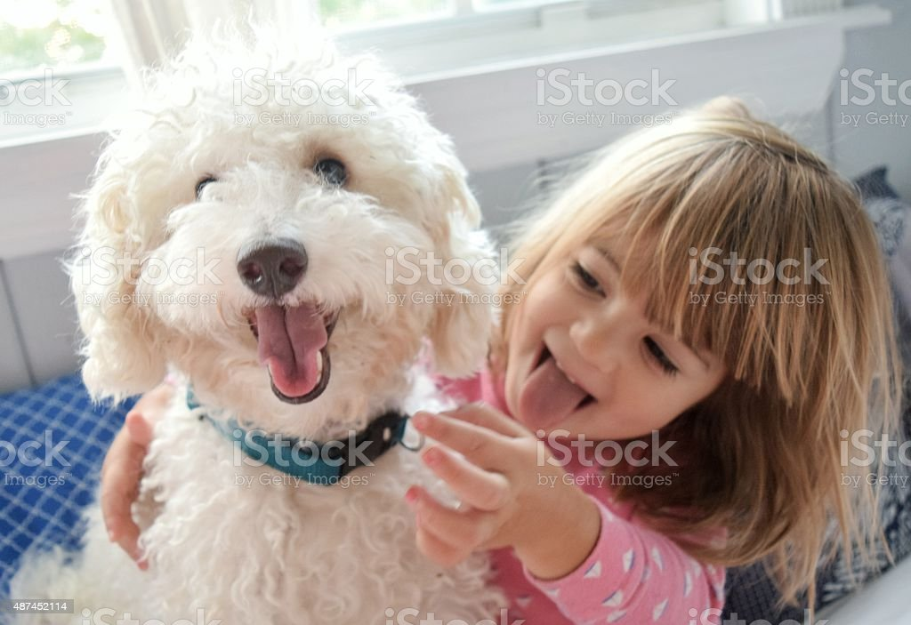 I'm a dog too stock photo