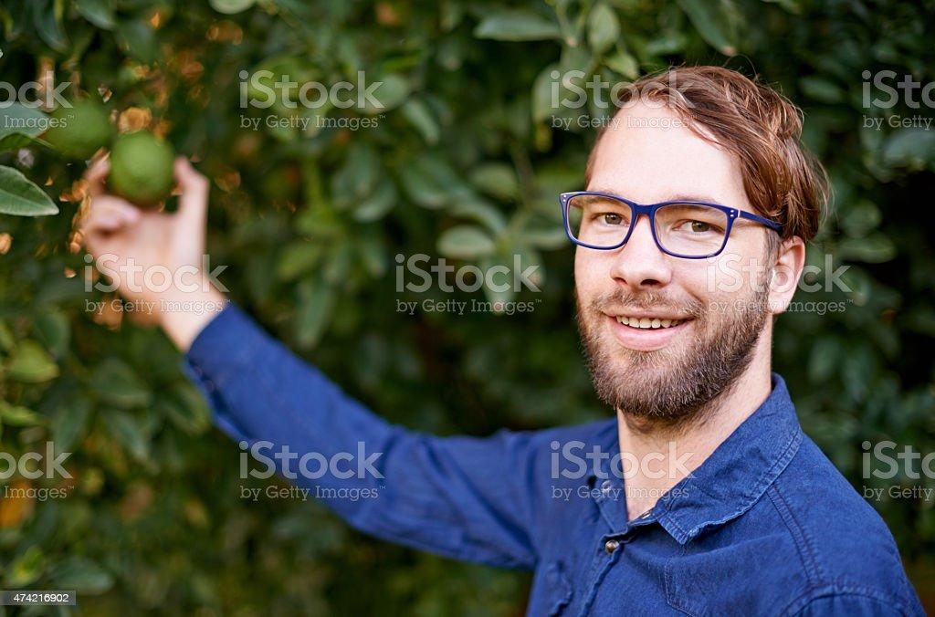 I'm an avocado specialist stock photo