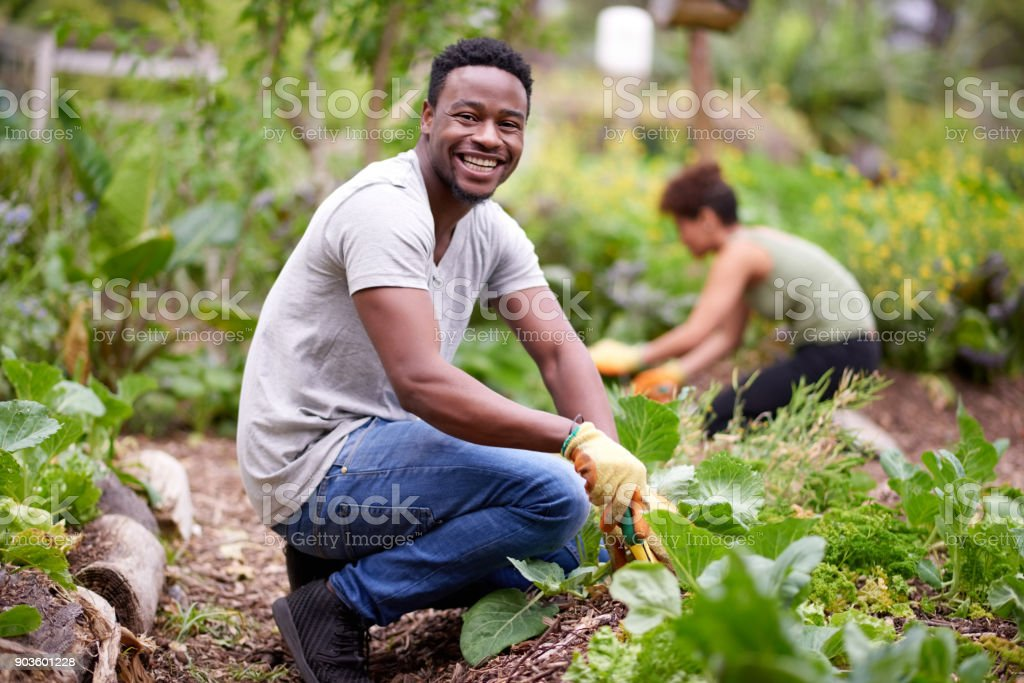 I'm happiest when I'm working my fields stock photo